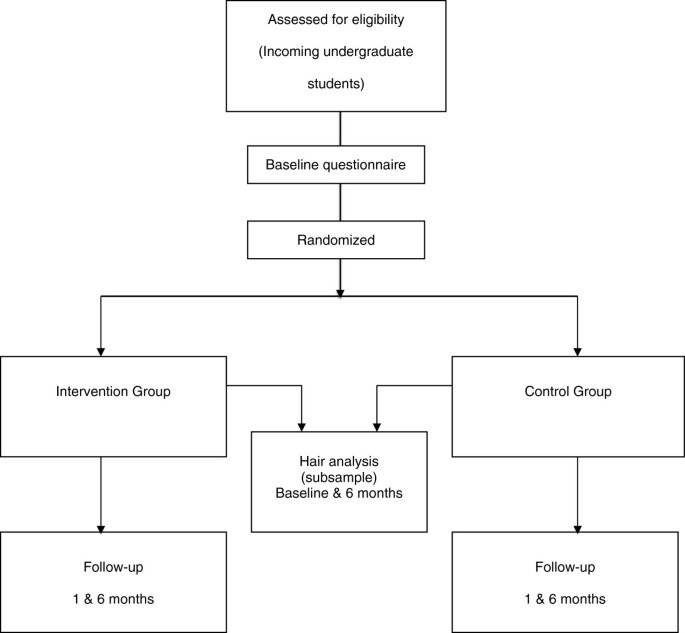 A theory-based online health behavior intervention for new