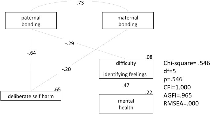 Parental bonding and personality characteristics of first