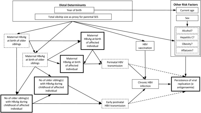 The association between maternal hepatitis B e antigen