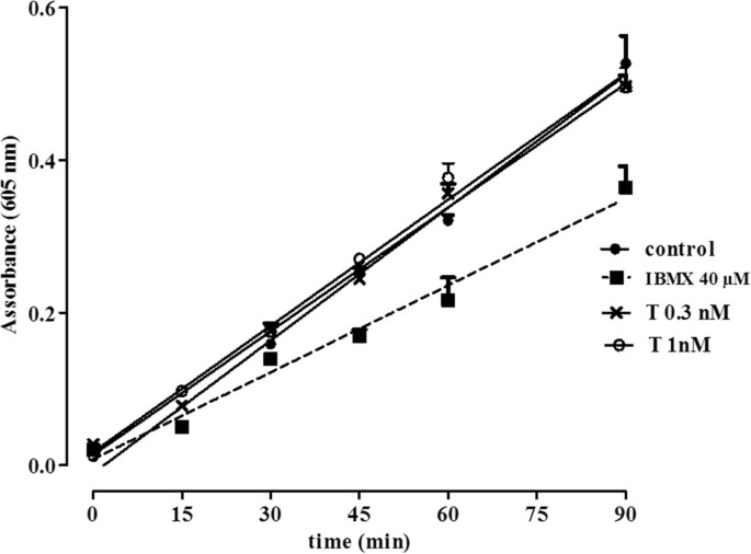 Effects of sex hormones on bronchial reactivity during the