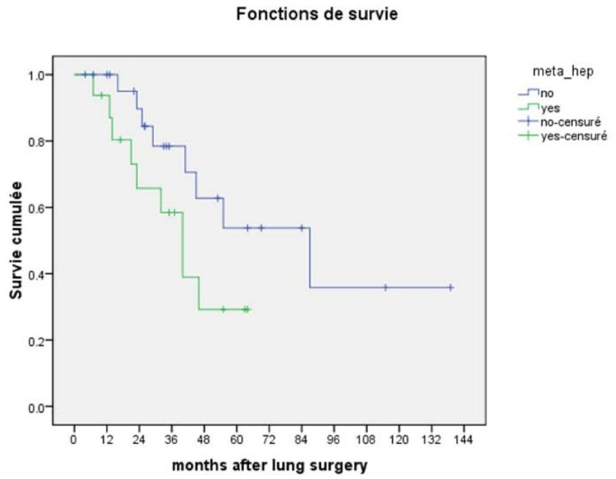 Predicting Survival After Pulmonary Metastasectomy For Colorectal Cancer Previous Liver Metastases Matter Bmc Surgery Full Text