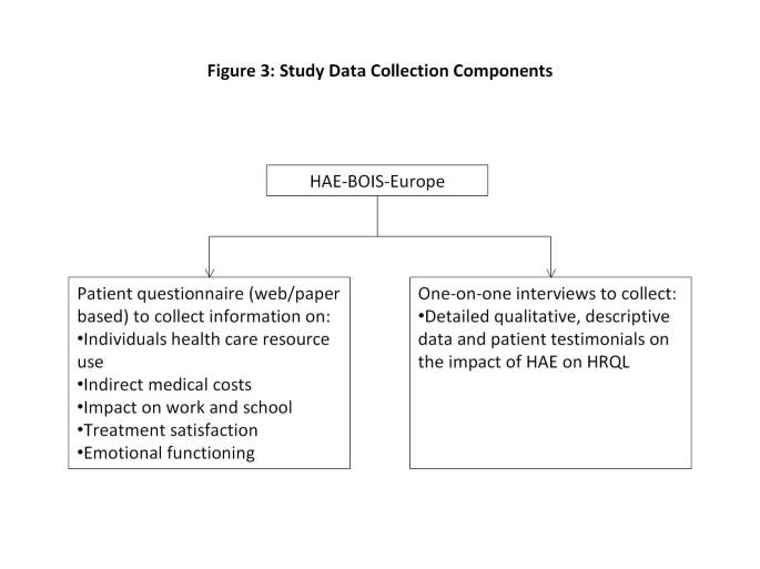 The hereditary angioedema burden of illness study in Europe
