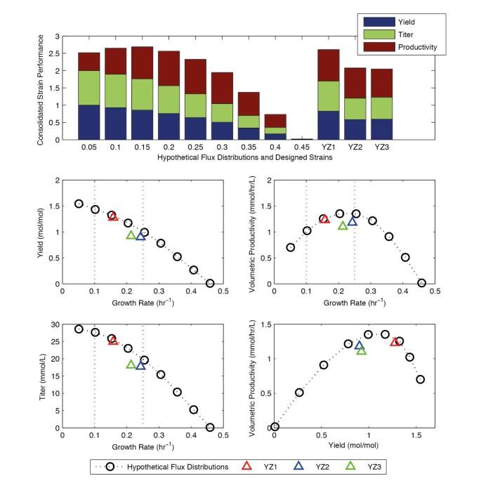 Dynamic strain scanning optimization: an efficient strain