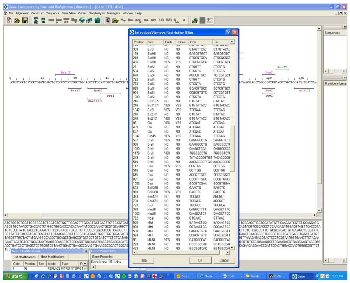 Gene Composer: database software for protein construct