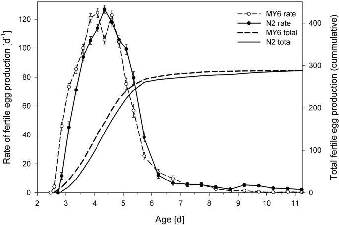 Life cycle and population growth rate of Caenorhabditis
