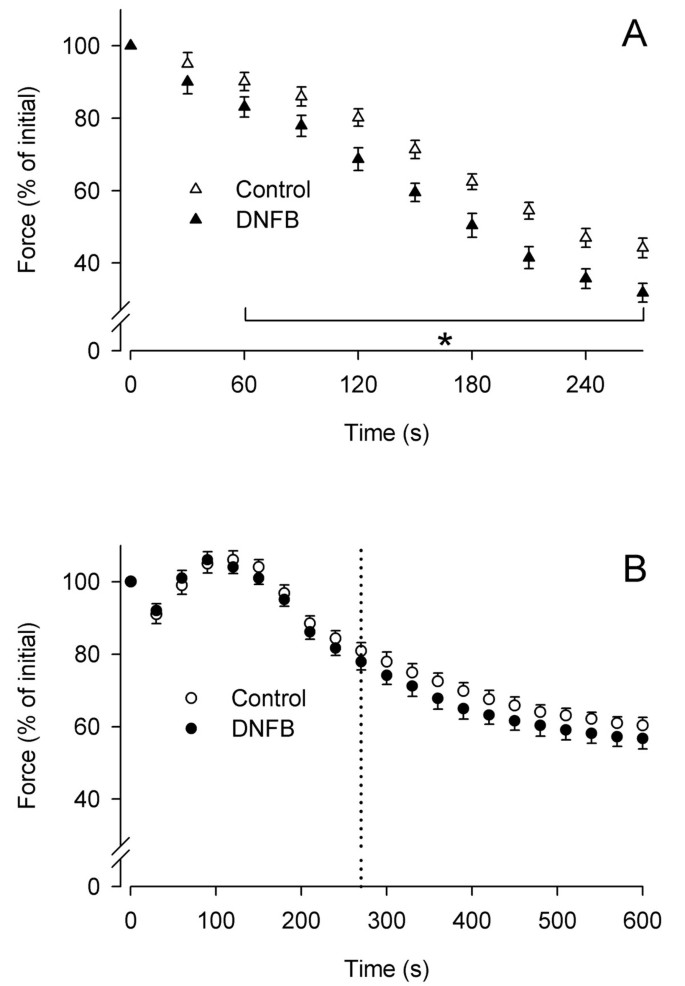 Fatigue resistance of rat extraocular muscles does not