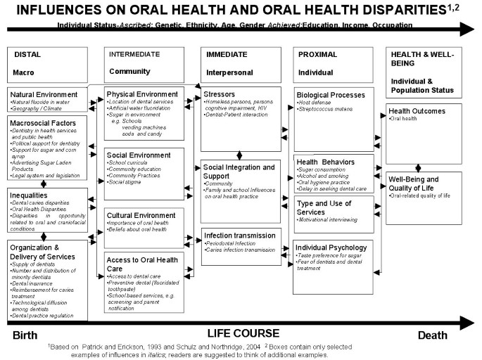 Reducing Oral Health Disparities: A Focus on Social and Cultural