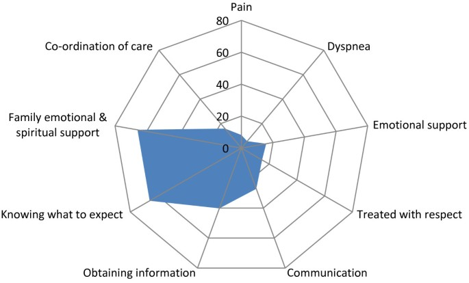 Bereaved family member perceptions of patient-focused family