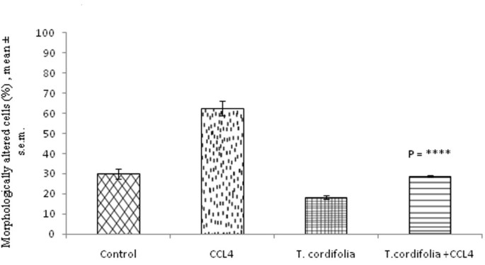 Effect of aqueous extract of Tinospora cordifolia on