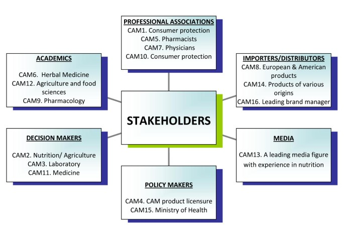 Stakeholders' perspectives on the regulation and integration