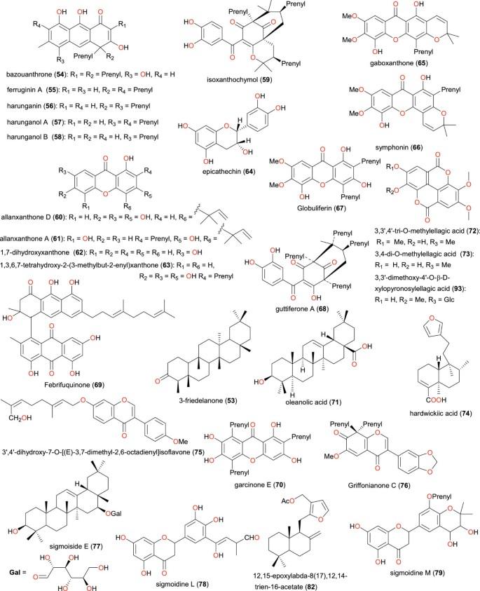Cameroonian medicinal plants: a bioactivity versus ethnobotanical