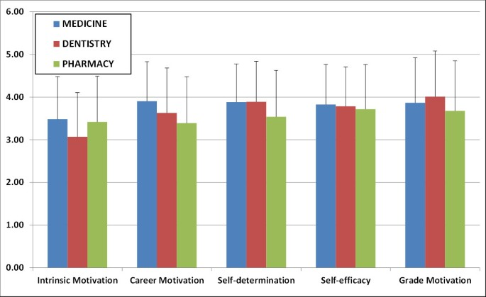 Motivational component profiles in university students