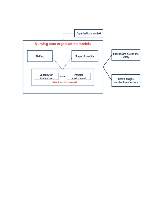 A Taxonomy Of Nursing Care Organization Models In Hospitals
