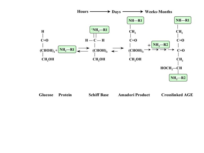 How hyperglycemia promotes atherosclerosis: molecular