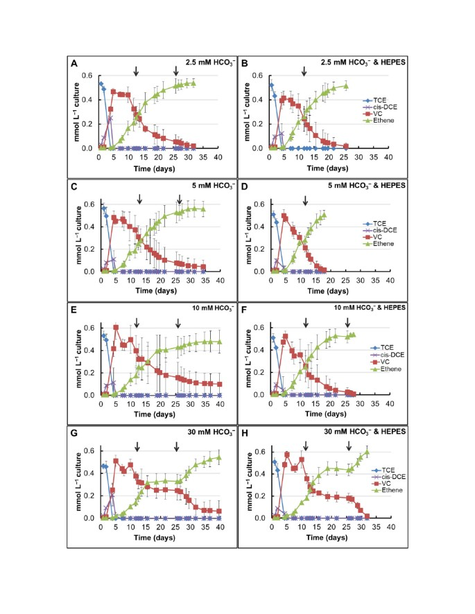 Role of bicarbonate as a pH buffer and electron sink in