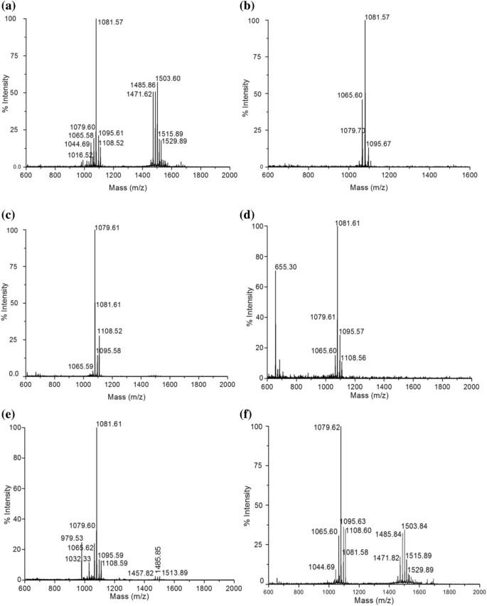 Substrate dependent in vitro antifungal activity of Bacillus sp