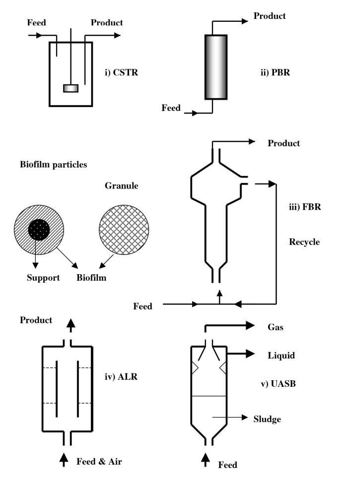 Biofilm reactors for industrial bioconversion processes