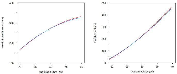 Effect of malaria in pregnancy on foetal cortical brain