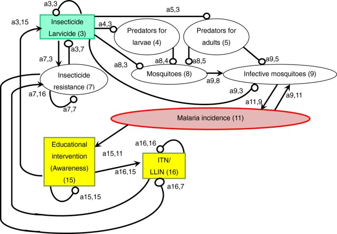 Application of loop analysis for evaluation of malaria