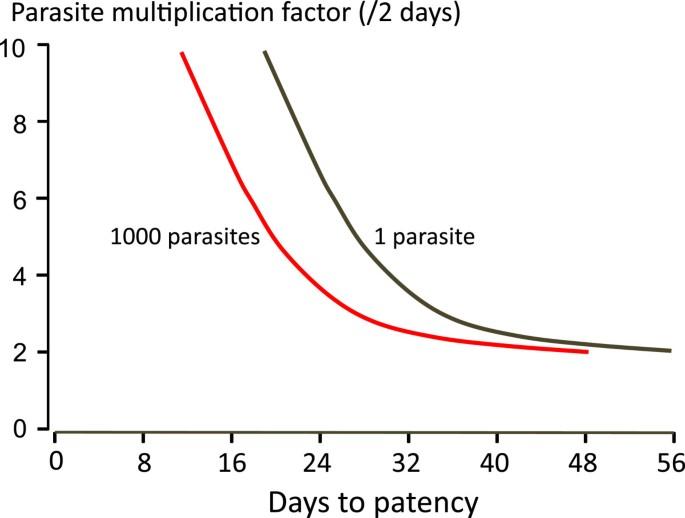 The duration of Plasmodium falciparum infections | Malaria Journal