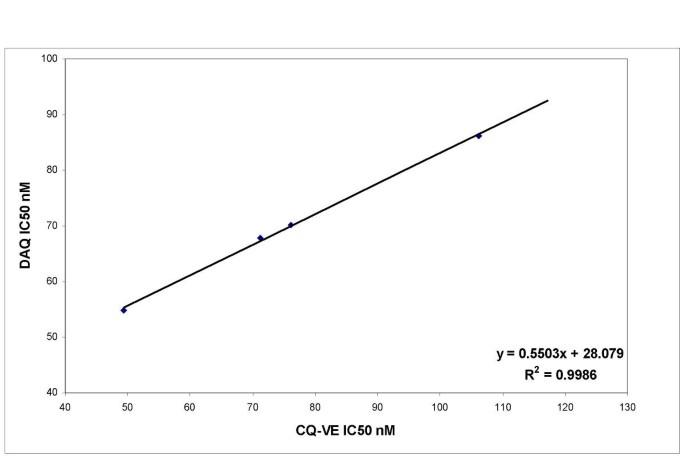 Polymorphism in the Plasmodium falciparum chloroquine-resistance