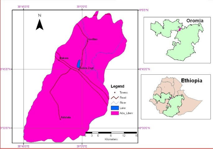 Chloroquine-resistant Plasmodium vivax malaria in Debre Zeit