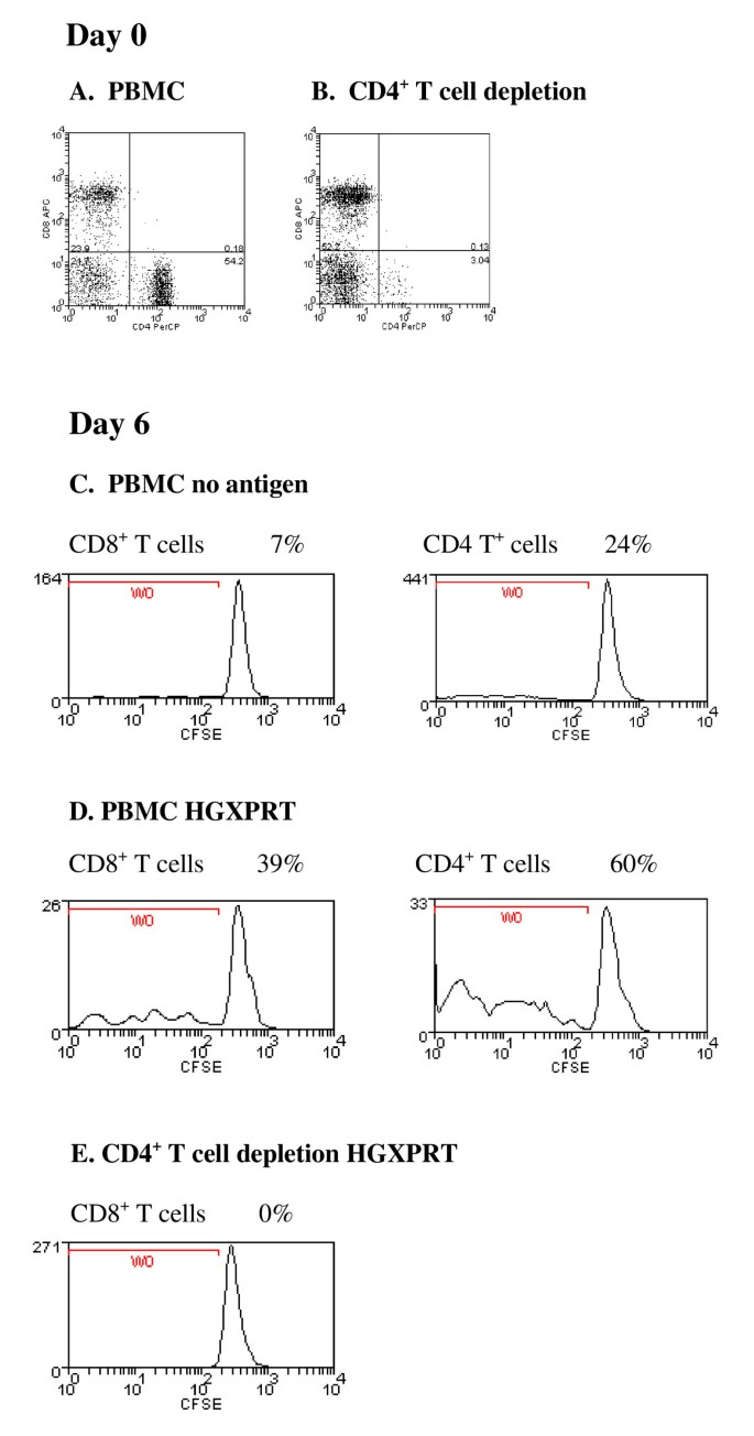 Human T cell recognition of the blood stage antigen