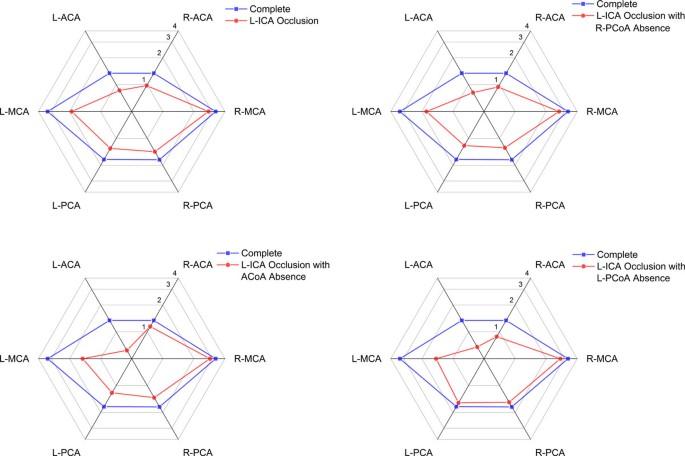 Experimental study of hemodynamics in the circle of willis