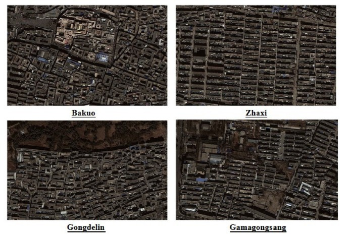 Rapid warming in Tibet, China: public perception, response