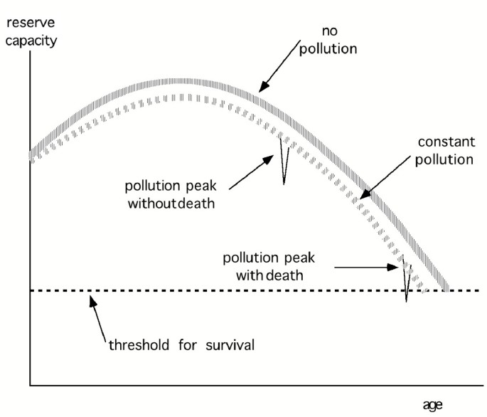 Analysis of air pollution mortality in terms of life