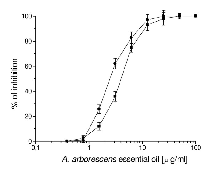 Antiherpevirus activity of Artemisia arborescens essential oil and