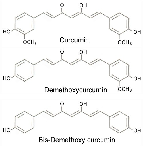 Curcumin: A review of anti-cancer properties and therapeutic