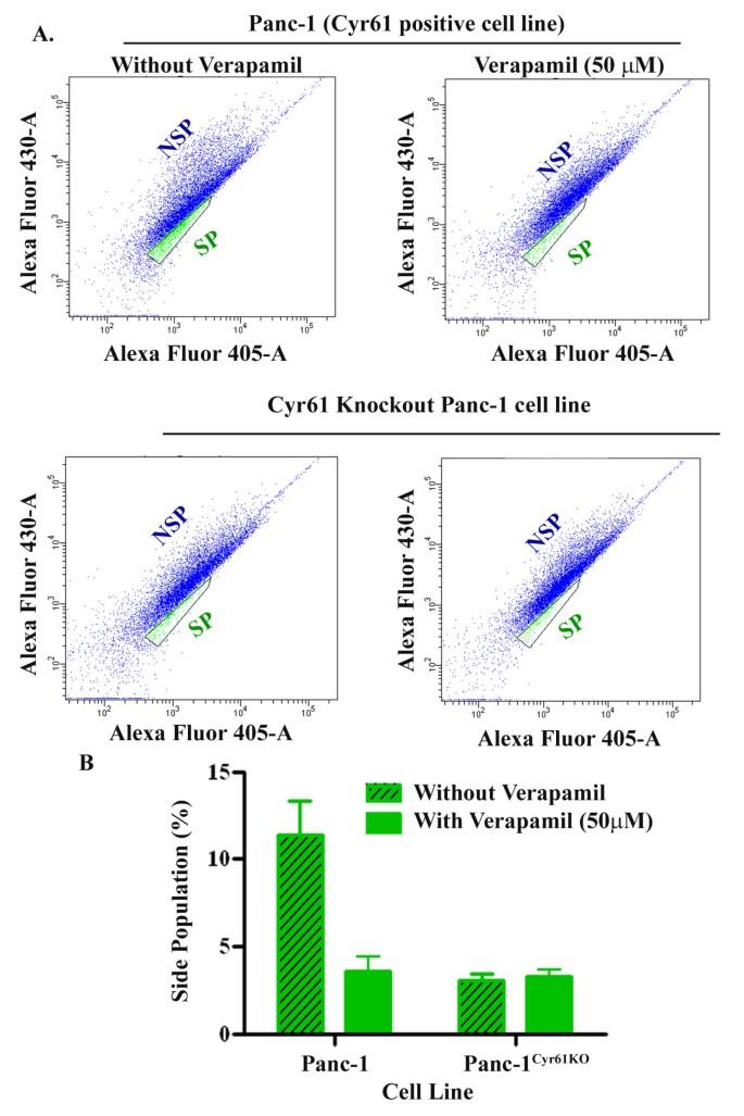 Cyr61/CCN1 signaling is critical for epithelial-mesenchymal