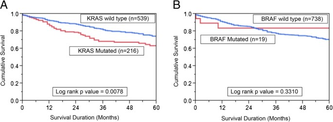 A Very Low Incidence Of Braf Mutations In Middle Eastern Colorectal Carcinoma Molecular Cancer Full Text