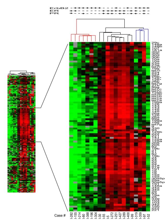 Optimized high-throughput microRNA expression profiling
