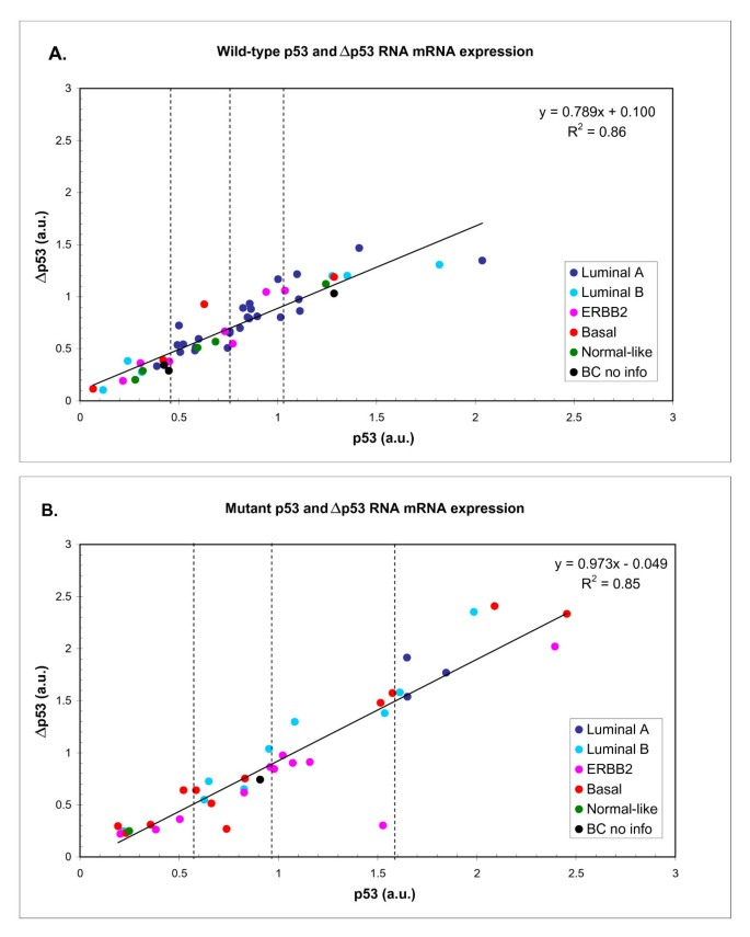 Expression of full-length p53 and its isoform Δp53 in breast