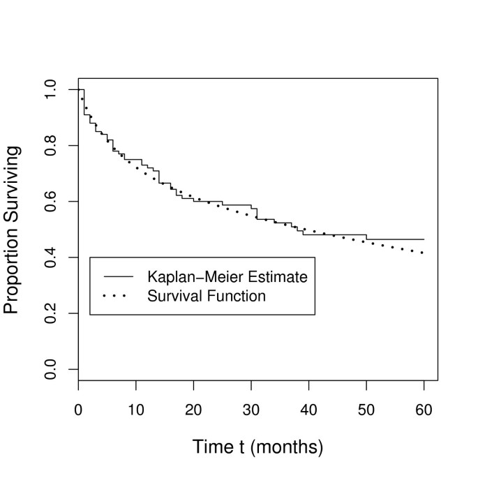 Modeling survival in colon cancer: a methodological review