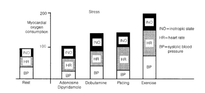 Anti-ischemic therapy and stress testing: pathophysiologic