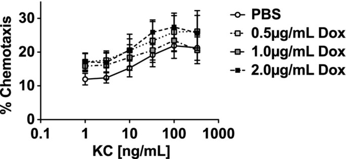 Doxycycline impairs neutrophil migration to the airspaces of