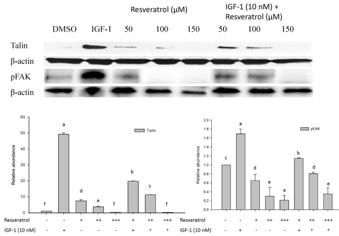 Resveratrol Suppresses Human Colon Cancer Cell Proliferation And Induces Apoptosis Via Targeting The Pentose Phosphate And The Talin Fak Signaling Pathways A Proteomic Approach Proteome Science Full Text
