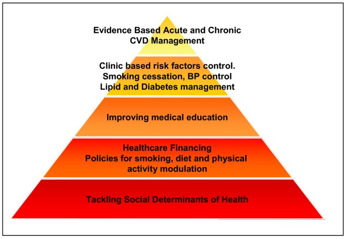 Translating evidence into policy for cardiovascular disease