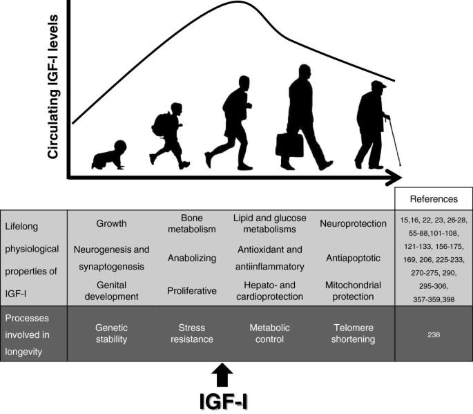 Human conditions of insulin-like growth factor-I (IGF-I