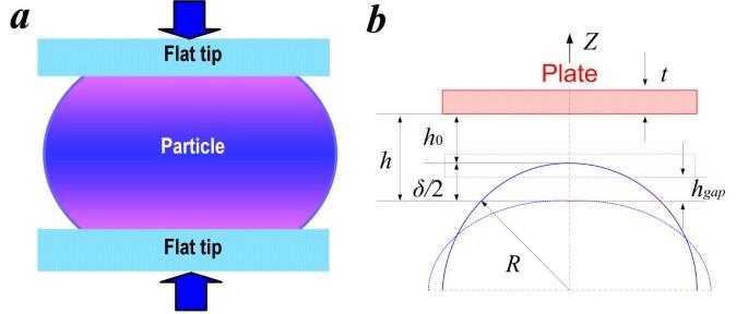 Size-dependent mechanical behavior of nanoscale polymer