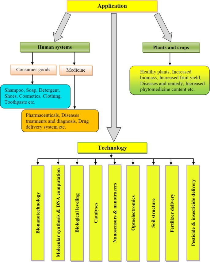 Phytosynthesis of nanoparticles: concept, controversy and