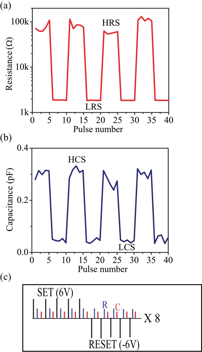 Coexistence of memory resistance and memory capacitance in
