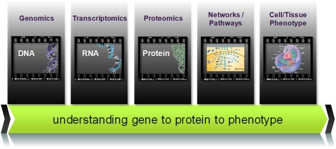 Proteogenomic convergence for understanding cancer pathways