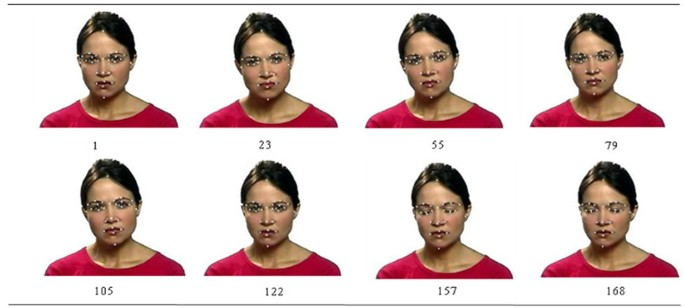 Automatic landmark point detection and tracking for human facial