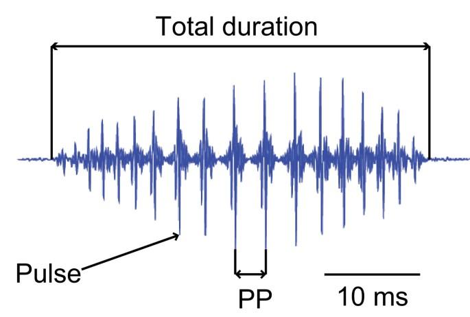 Ontogenetic development of auditory sensitivity and sound production
