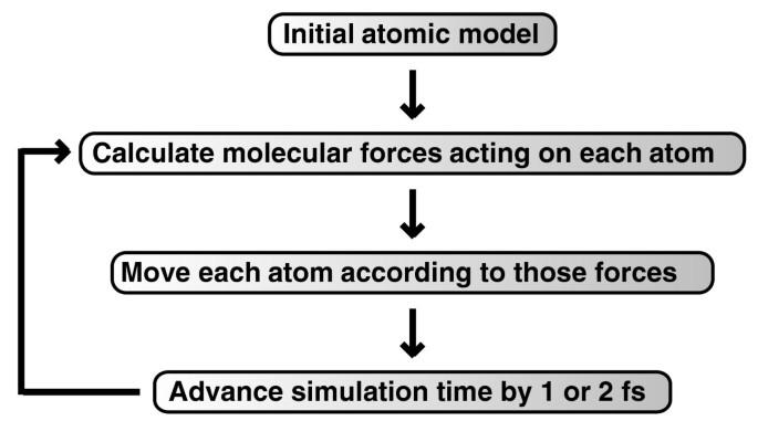Molecular dynamics simulations and drug discovery | BMC