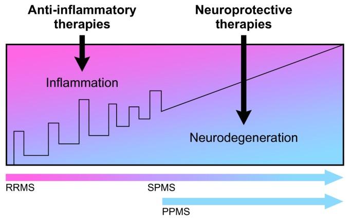 Recent developments in multiple sclerosis therapeutics | BMC